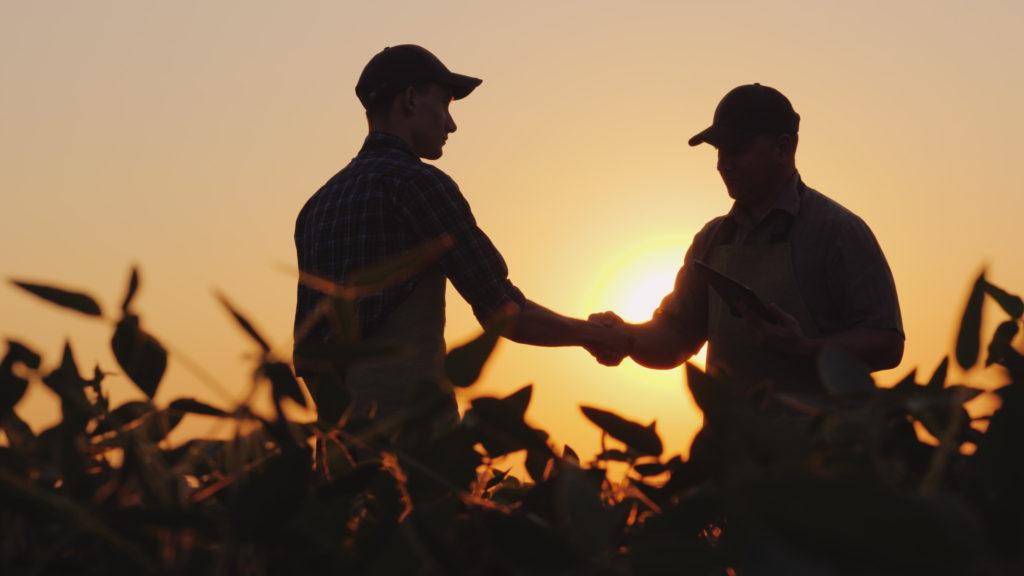 Zwei Männer schütteln sich am Feld die Hand