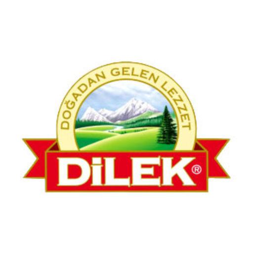 Logo Dilek