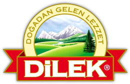 Dilek Official Logo